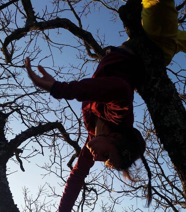 Danse dans l'arbre © Cie du Parquet Nomade
