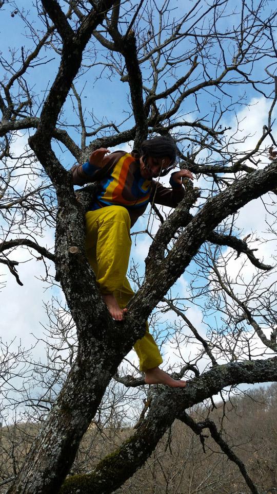 Danse dans l'arbre, Toscane © Cie du Parquet Nomade
